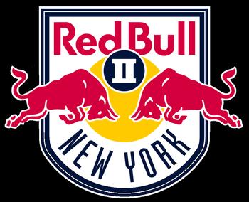 RED BULLS II GO SCARLETT: USL side signs Iona defender